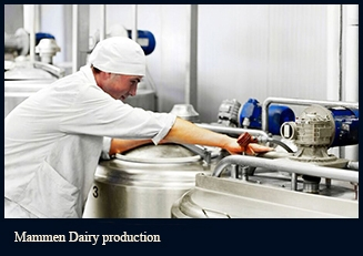 mammen_dairy_production